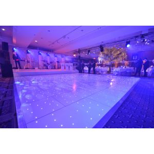 White LED Dance Floor  (per 2ft x 2ft panel)